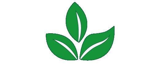ecosostenibilità-11-12